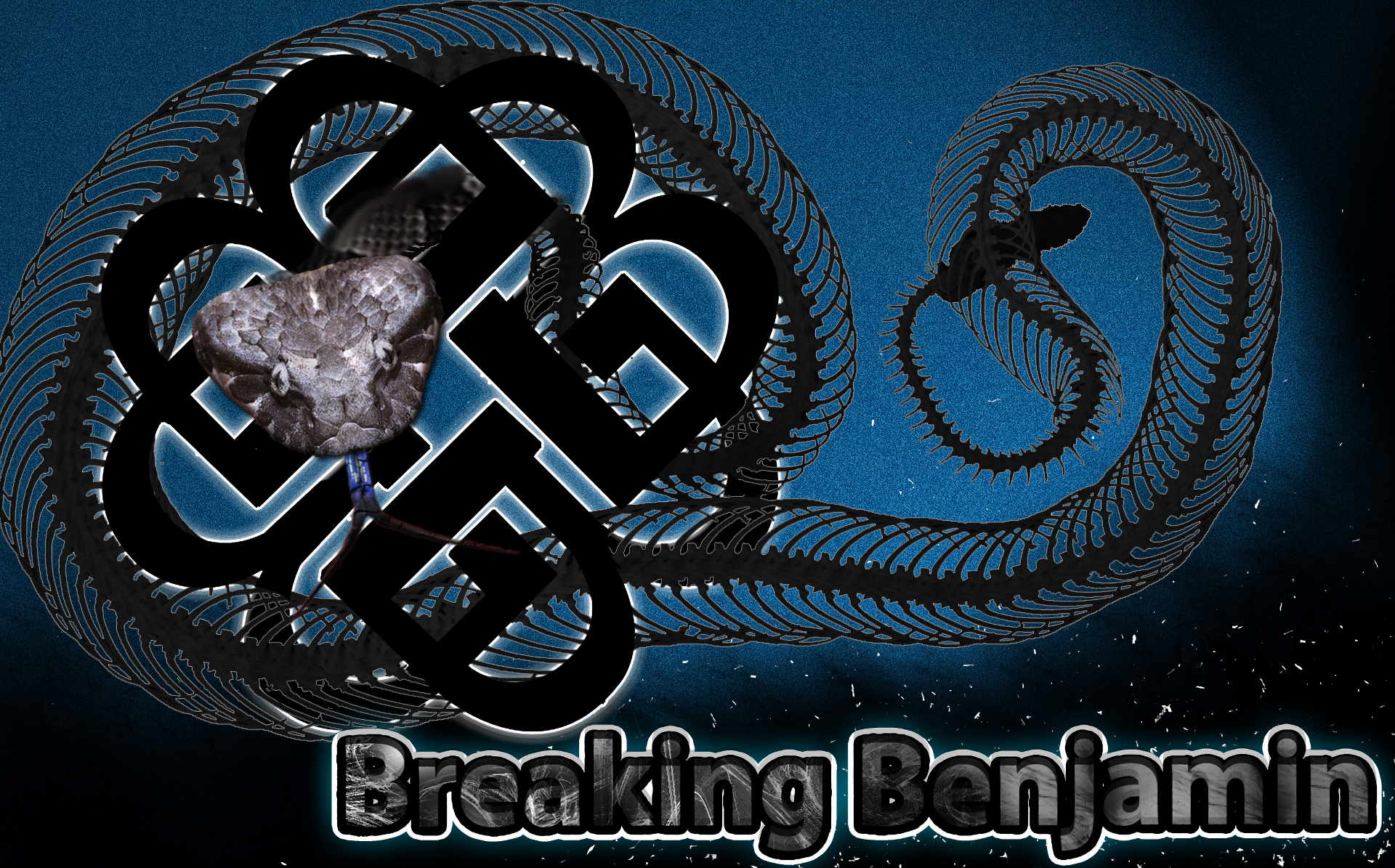 13 Breaking Benjamin HD Wallpapers Background Images   Wallpaper 1920x1195
