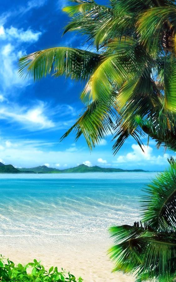 50 Free Tropical Beach Live Wallpaper On Wallpapersafari