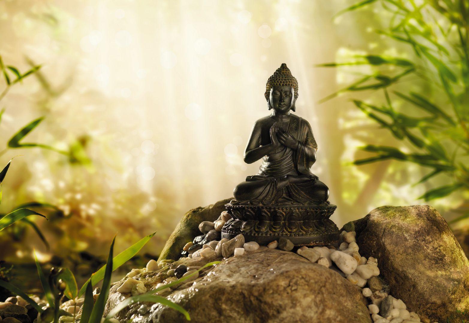 47+ Lord Buddha Wallpaper HD on WallpaperSafari