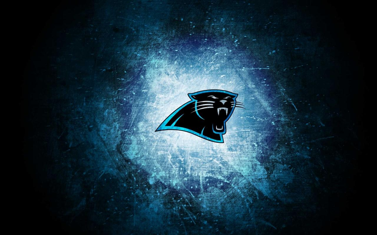 Panthers Logo Wallpaper Wallpapersafari