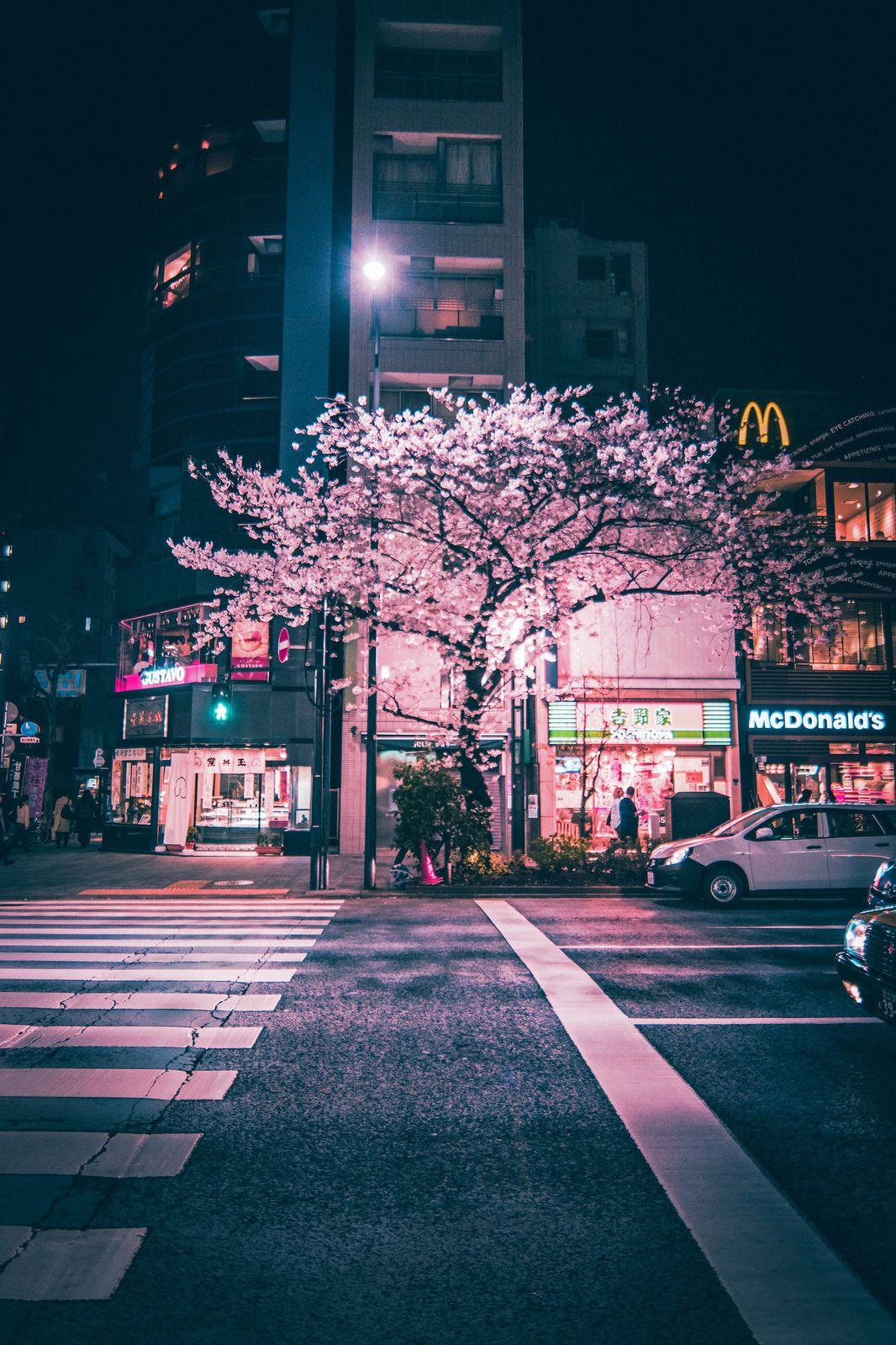 Chuo   Tokyo Japan Aesthetic japan Sky aesthetic City aesthetic 1066x1600