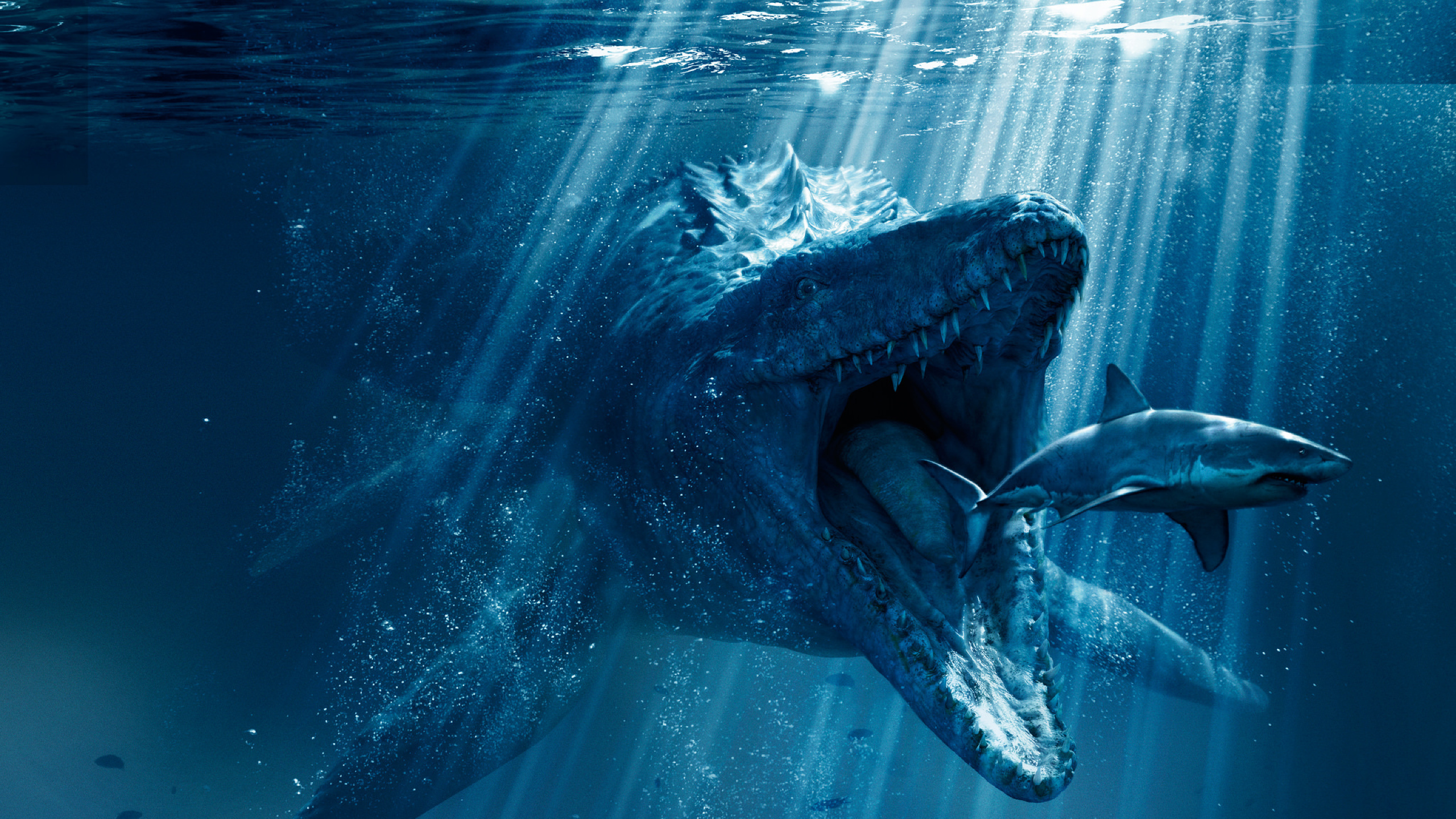 28 Mosasaurus Wallpaper On Wallpapersafari