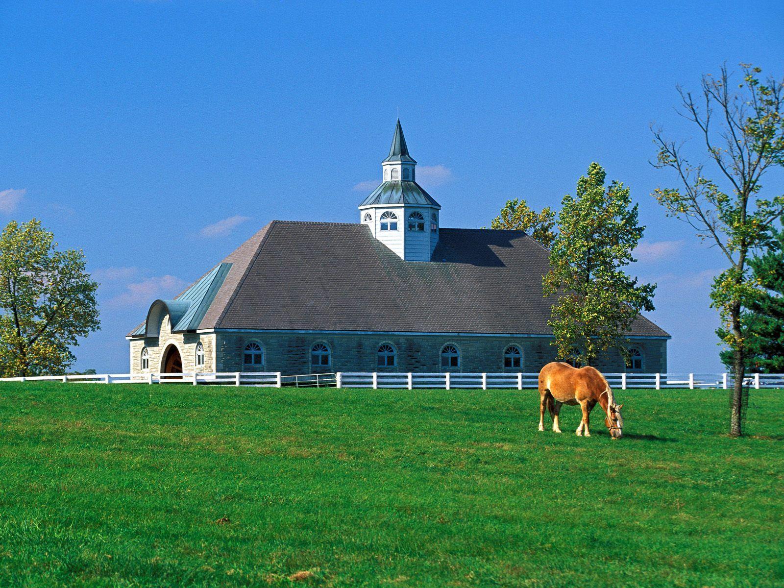 Kentucky photo Donamire Horse Farm Lexington Kentucky wallpaper 1600x1200