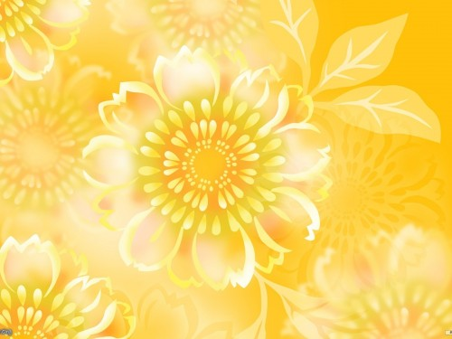 HD Flower Wallpaper Yellow Flowers Wallpaper 500x375