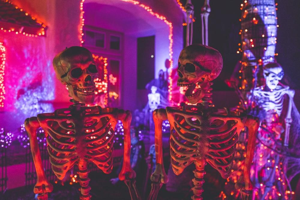 Halloween Wallpapers HD Download [500 HQ] Unsplash 1000x667
