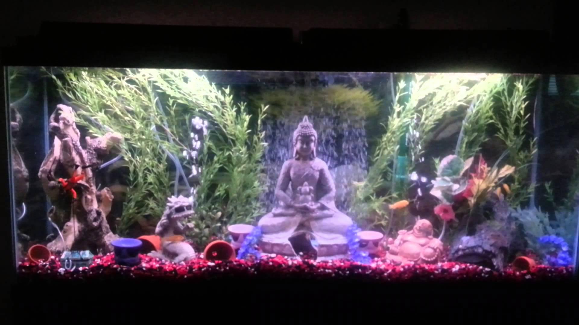 Asian Themed Fish Tank Decorations  from cdn.wallpapersafari.com