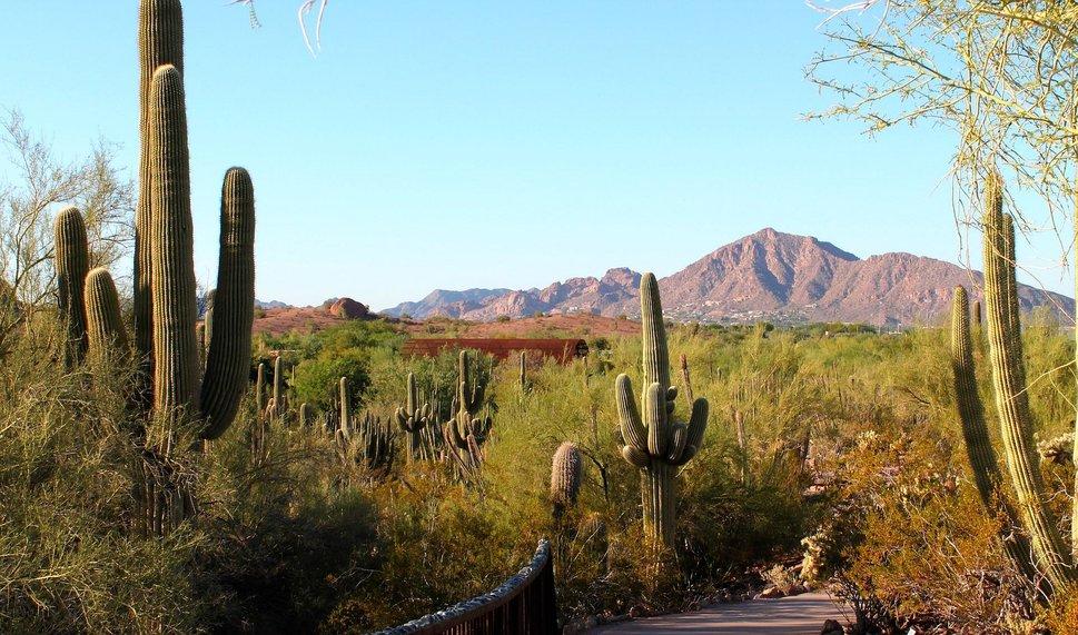 desert landscape wallpaper - photo #37