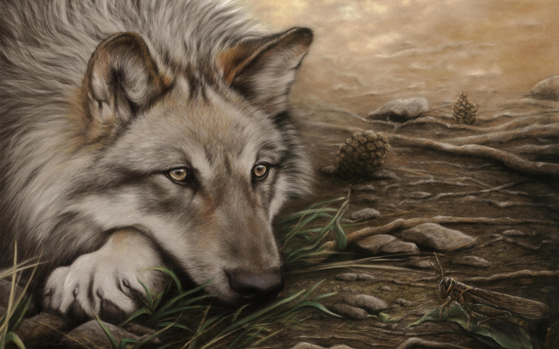 awesome wolf wallpapers wallpapersafari