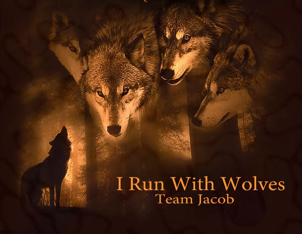 Twilight Wolf Pack Graphics Code Twilight Wolf Pack Comments 598x464