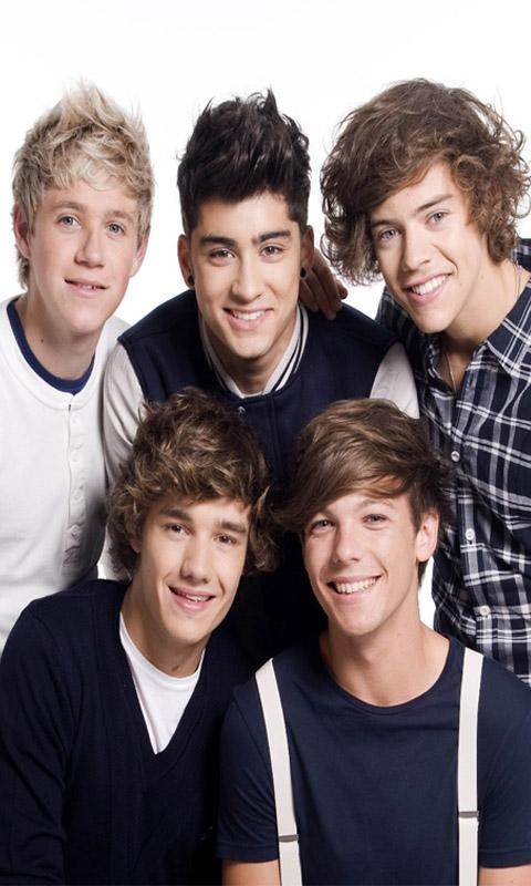 One Direction Live Wallpaper   screenshot 480x800