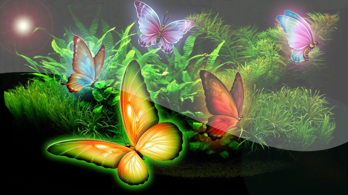Butterfly Garden Wallpaper Wallpapersafari