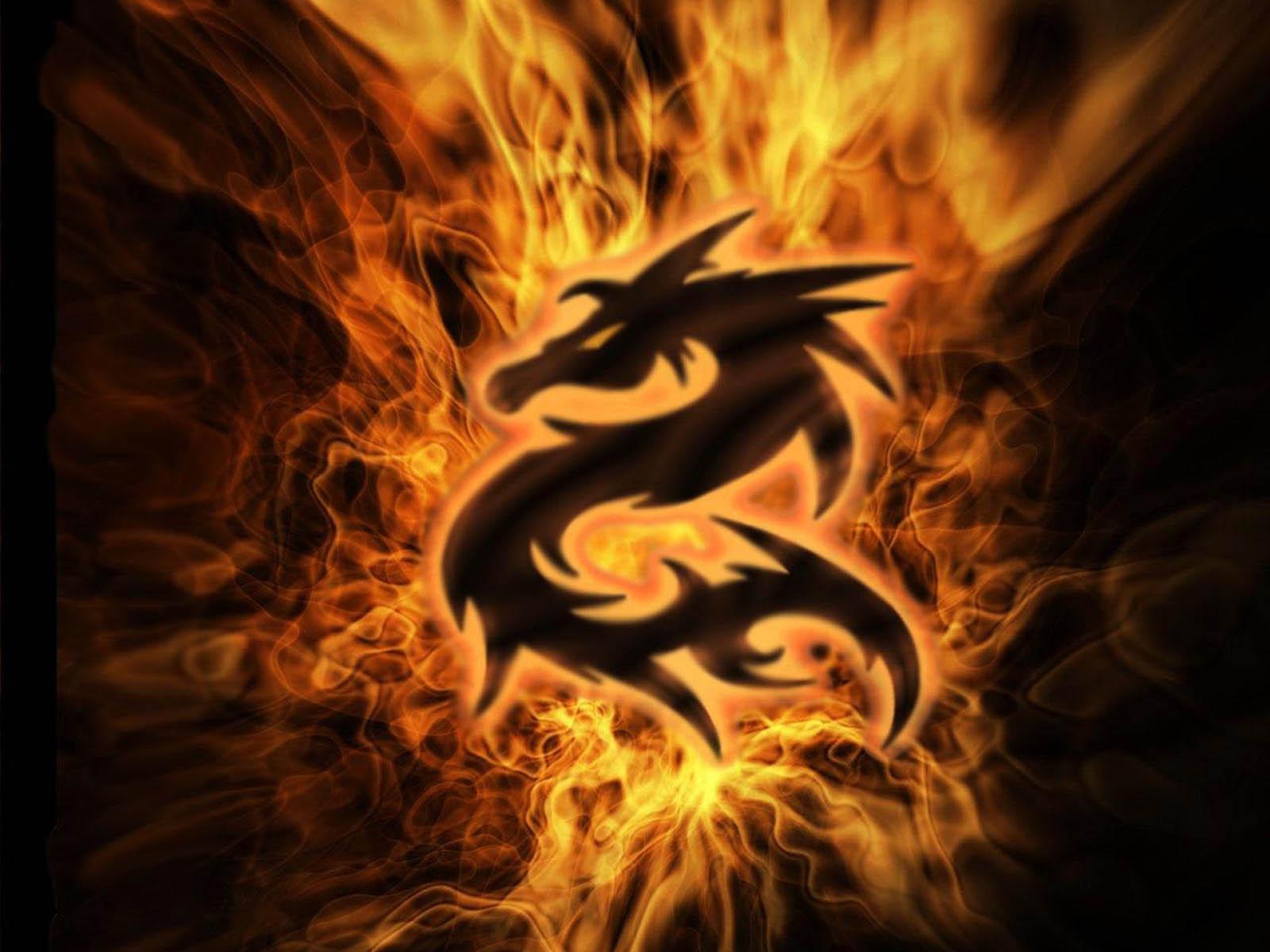 77 ] Free Dragon Wallpaper On WallpaperSafari