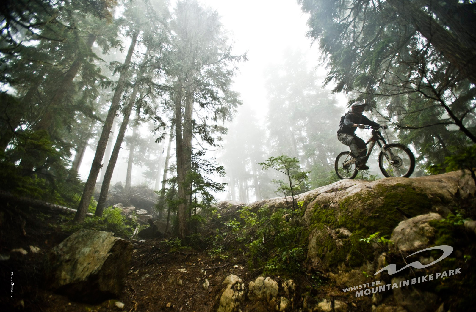 Valentine Day 2014 Mtb Wallpapers Specialized 1600x1050