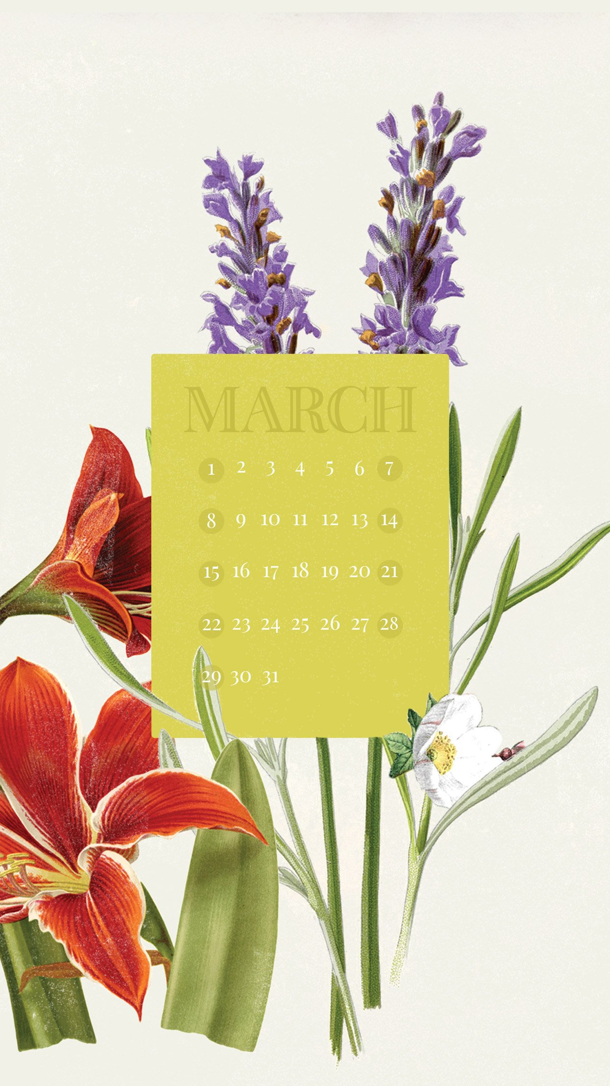 March 2015 Desktop Calendar Wallpaper Paper Leaf 1242x2208