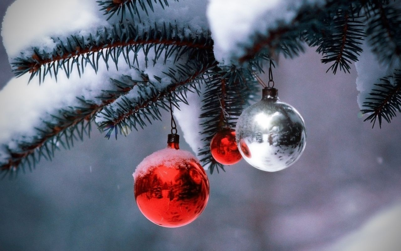 christmas season Find everything you need to get into the christmas spirit, including decorations, christmas trees, lights, yard inflatables, wreaths, garland and more.