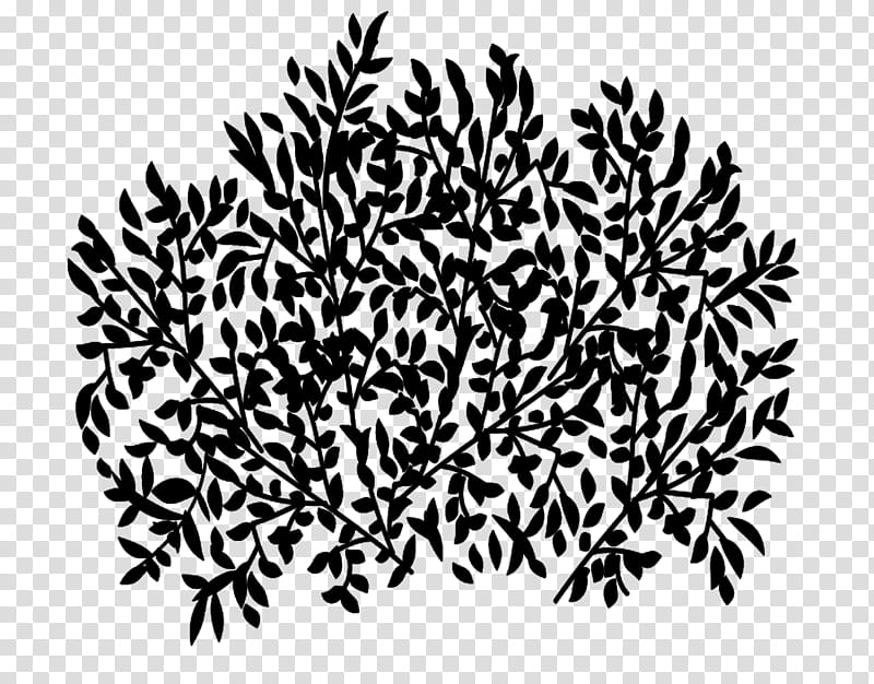Trees and Twigs Brushes black and white abstract painting 800x626