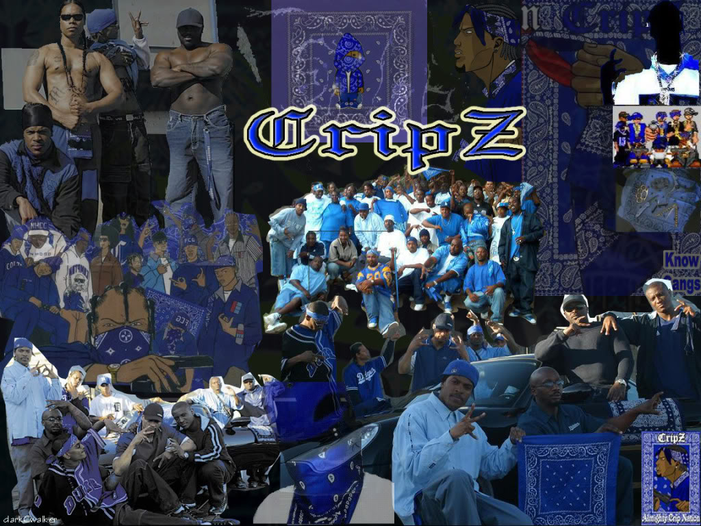 South Side Gangstah Crips 1024x768