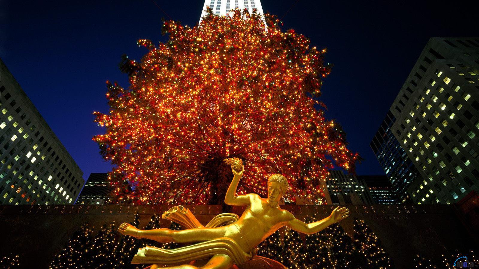 Desktop wallpapers Christmas in Rockefeller Center New York 1600x900