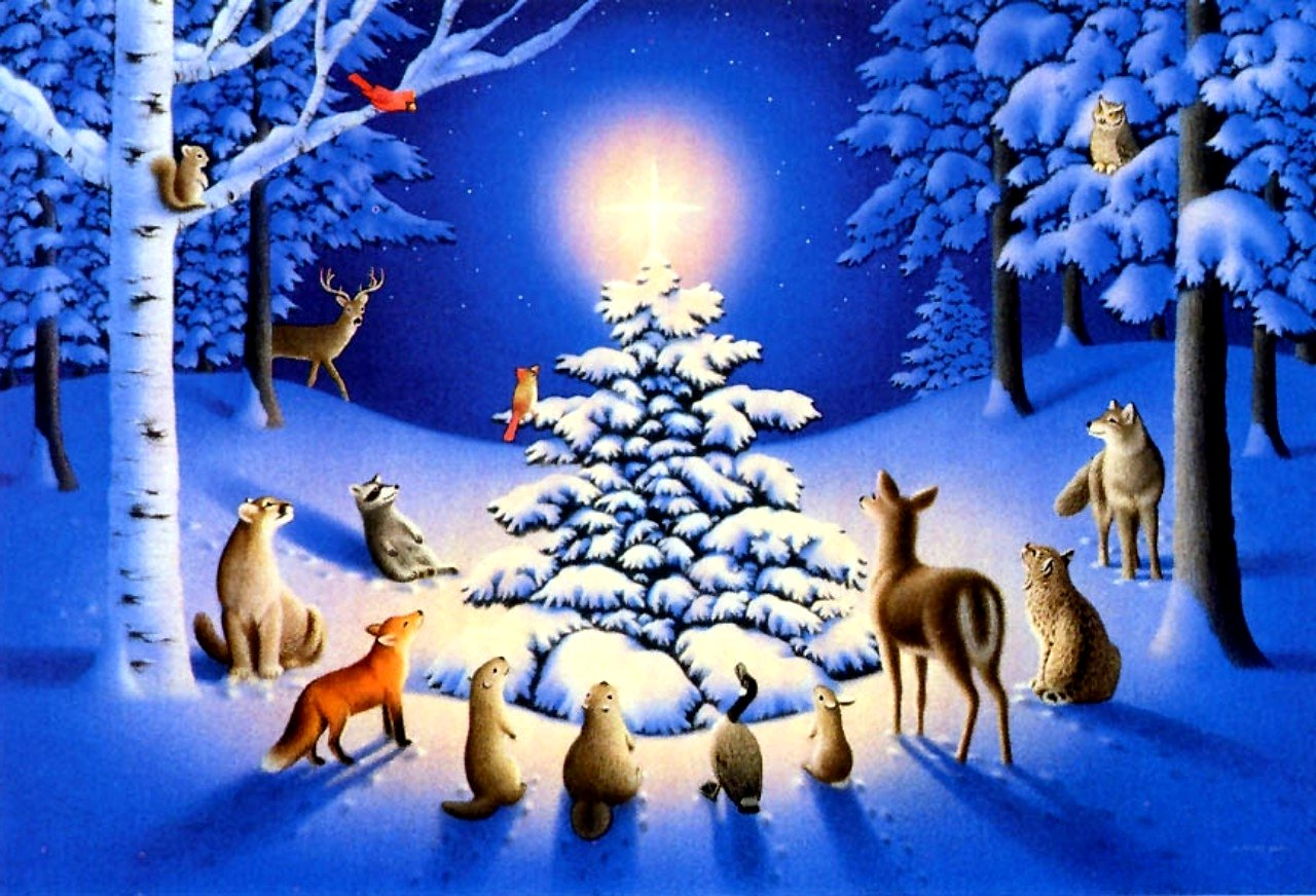 free christmas nature wallpaper