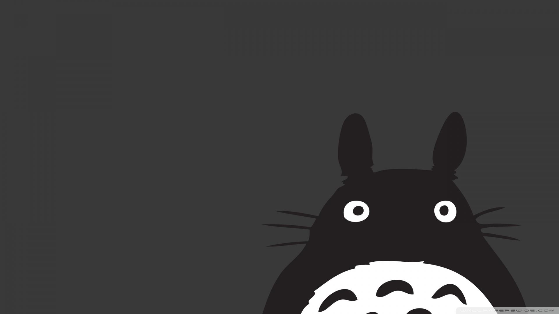 Totoro Anime Wallpaper 1920x1080 Totoro Anime 1920x1080