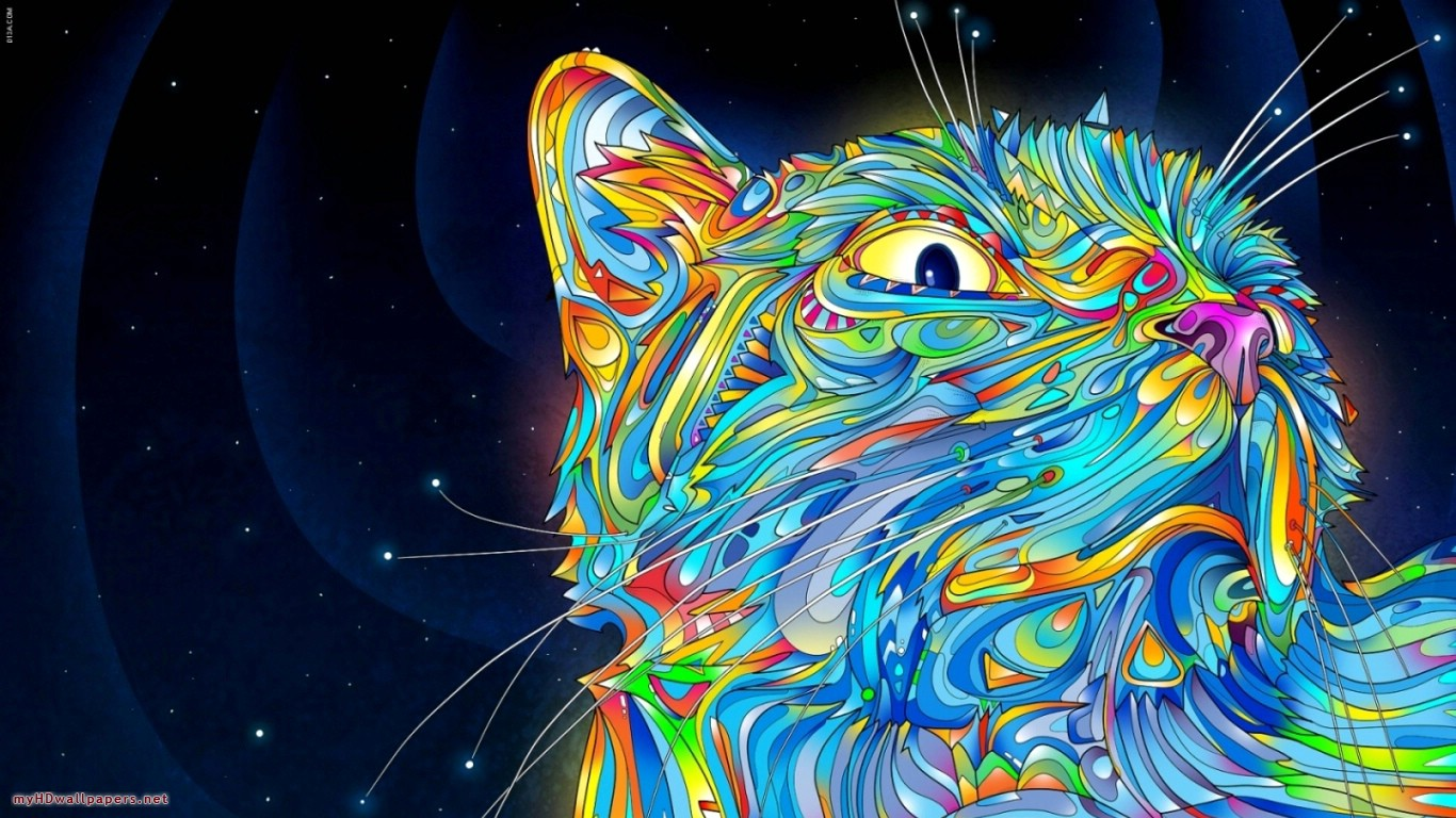 Colorful cat   Desktop Wallpaper HD Wallpapers Download and New 1366x768
