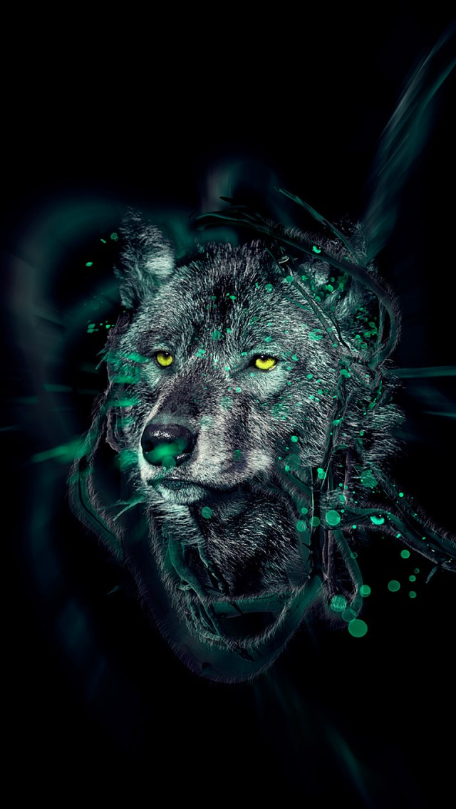 Wolf HD iPhone Wallpapers   IPhone 5 iPhone 640x1136