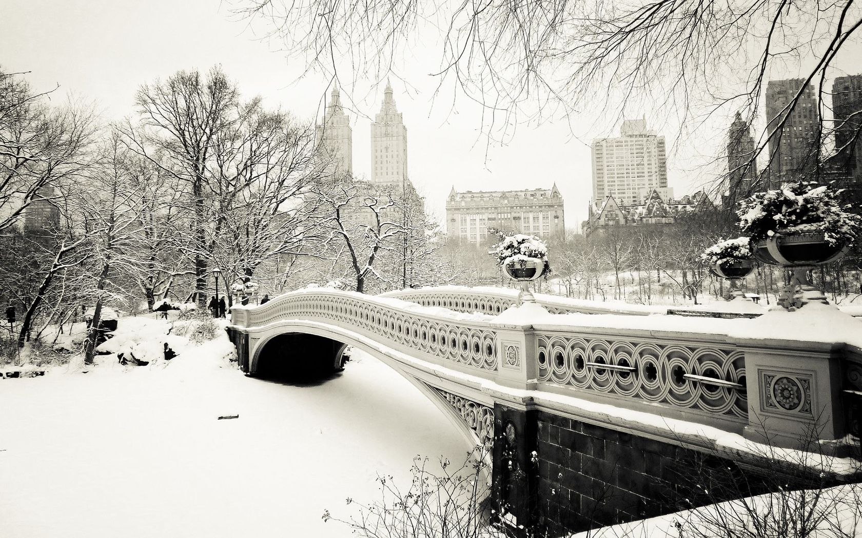 Winter in Central Park wallpaper 17895 1680x1050