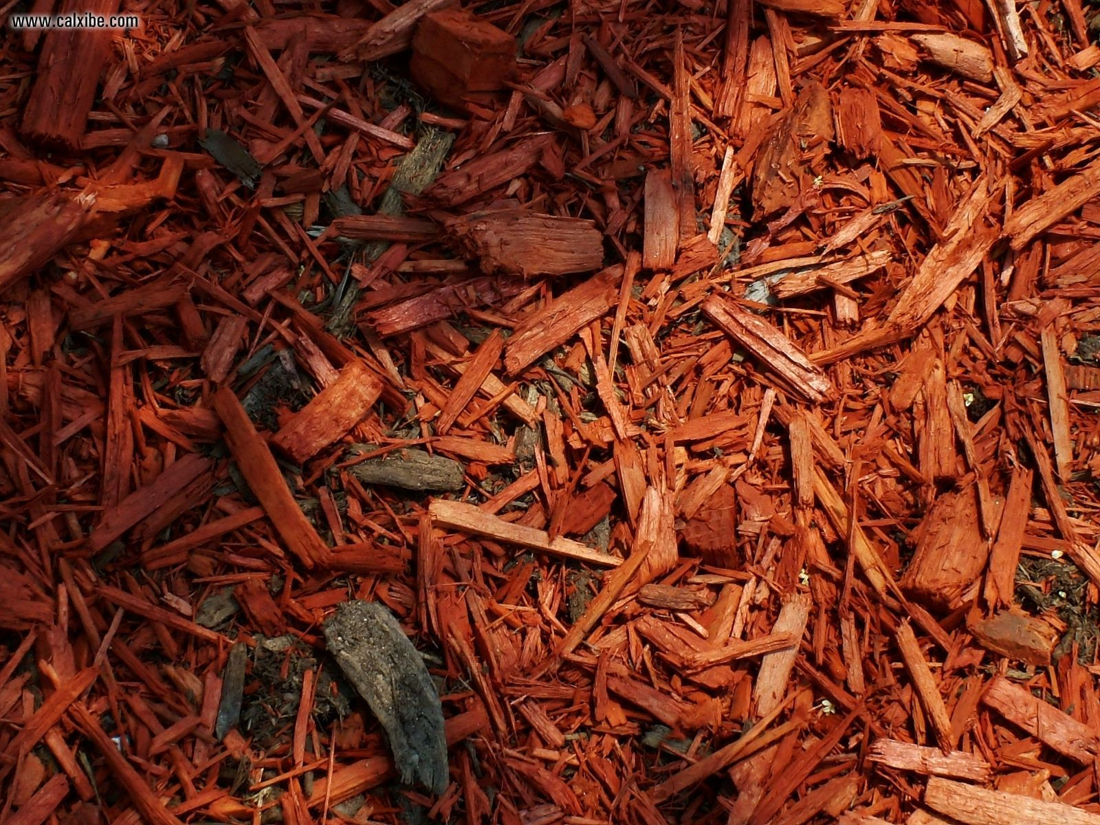 Wood Chip Mulch 1600x1200