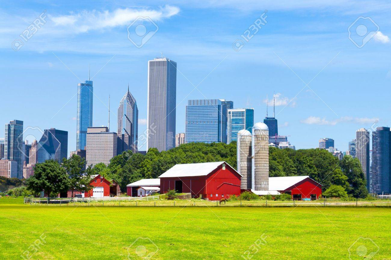 American Red Farm With Chicago Skyline In Background Stock Photo 1300x866