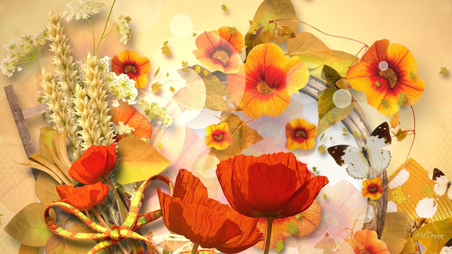 1920x1080px fall flowers wallpaper - wallpapersafari
