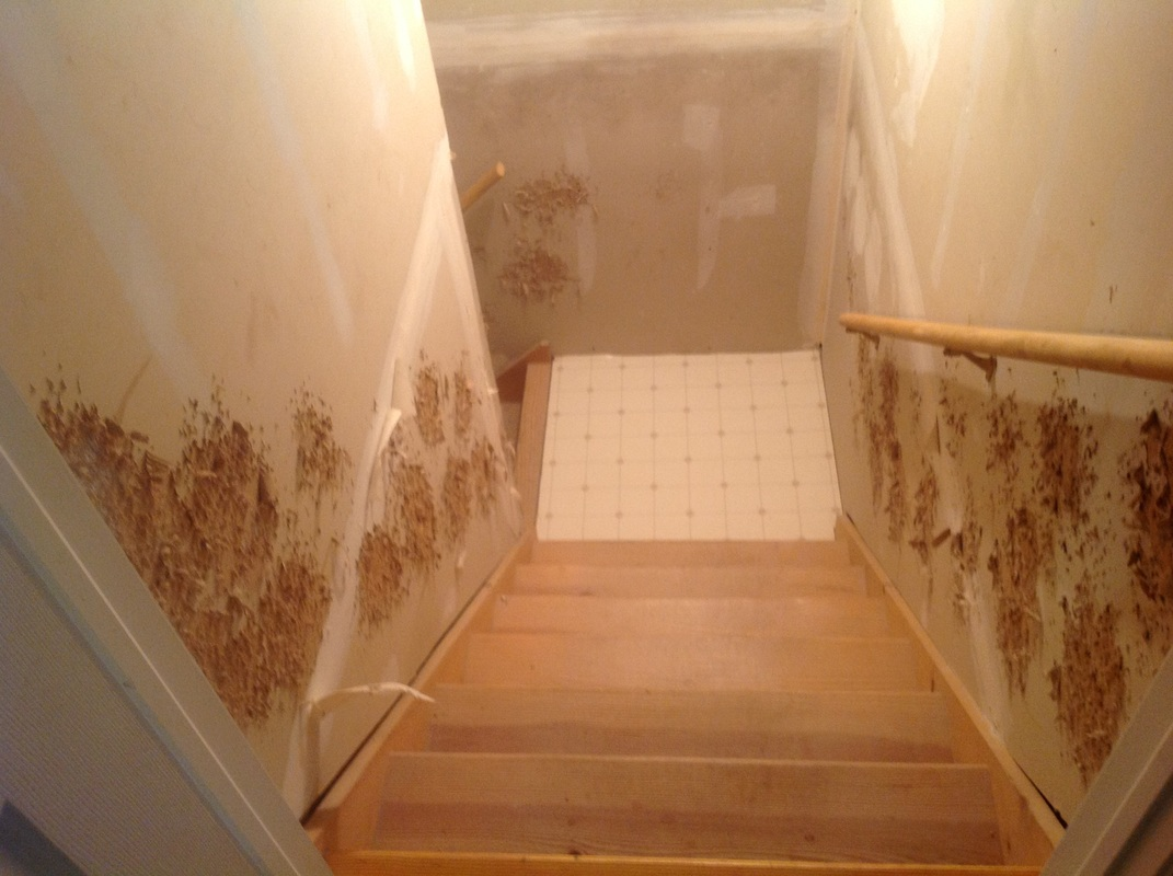 Wallpaper removal Ceilings Taping Sheetrock and Painting services 1071x800