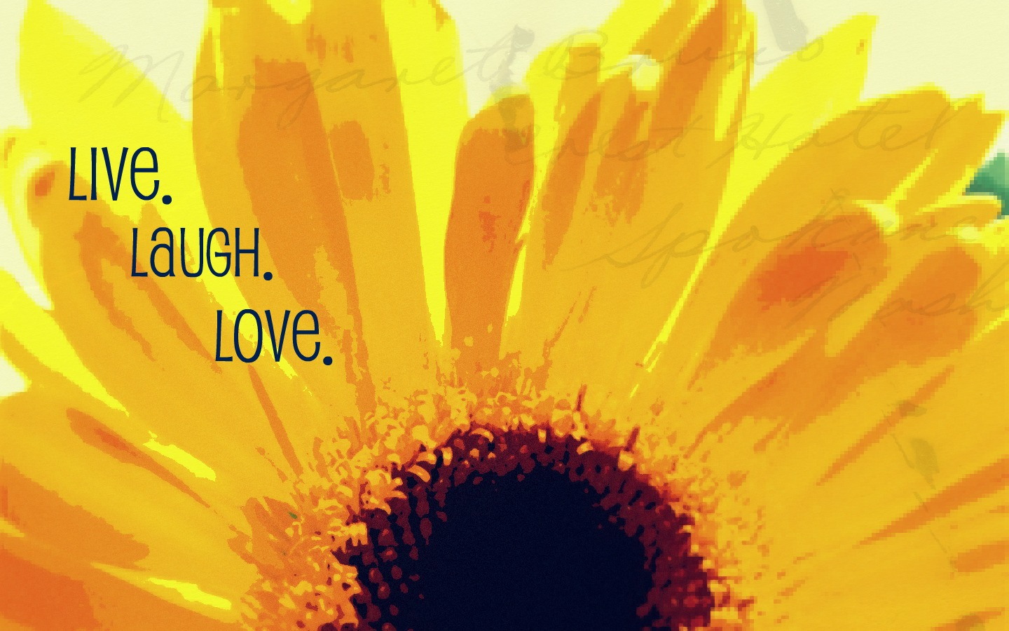Live Laugh Love Hd Wallpaper : Live Love Laugh Wallpaper - WallpaperSafari