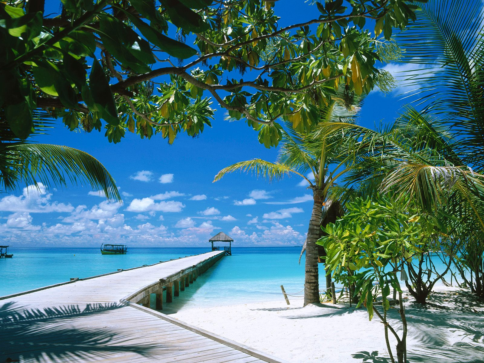 High Definition Beach Wallpapers by cool wallpapers 1600x1200
