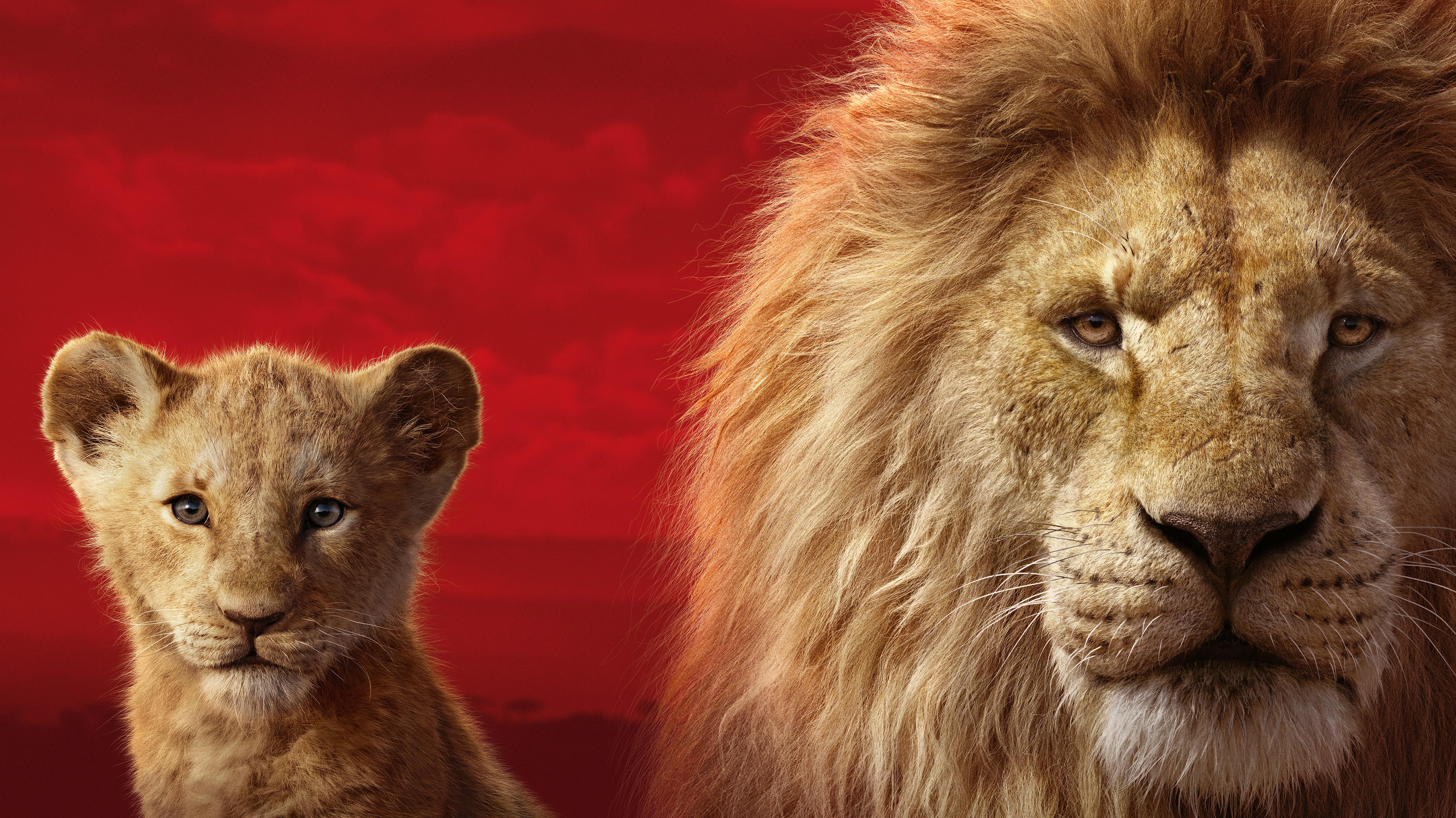 The Lion King 2019 5k Retina Ultra HD Wallpaper Background 5120x2880