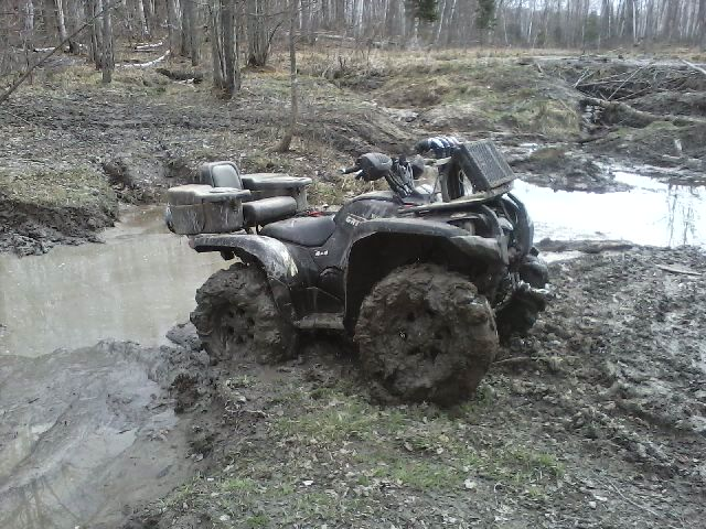 grizzly out mudding Picture QUADCRAZY ATV Community 640x480