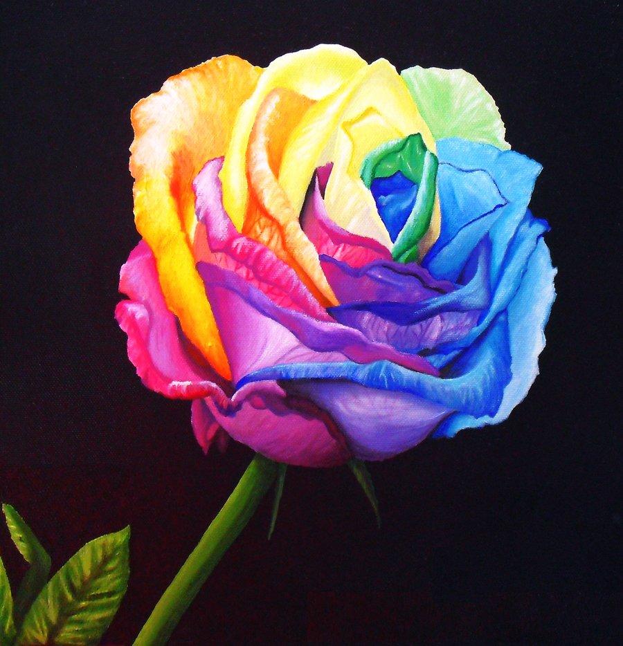 [47+] Rainbow Roses Wallpaper on WallpaperSafari