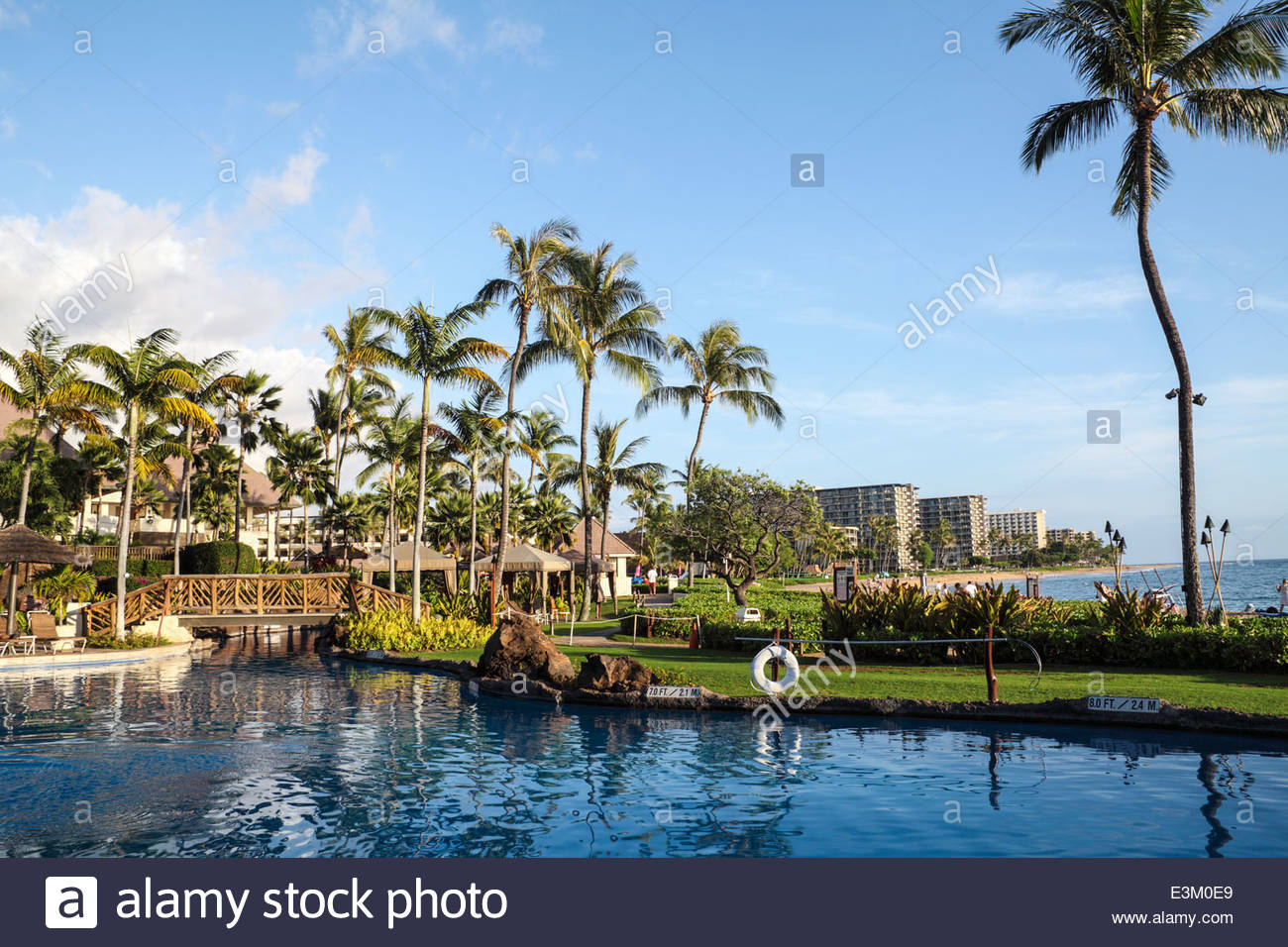 Pool at the Sheraton Maui Resort and Spa with Kaanapali Beach in 1300x956