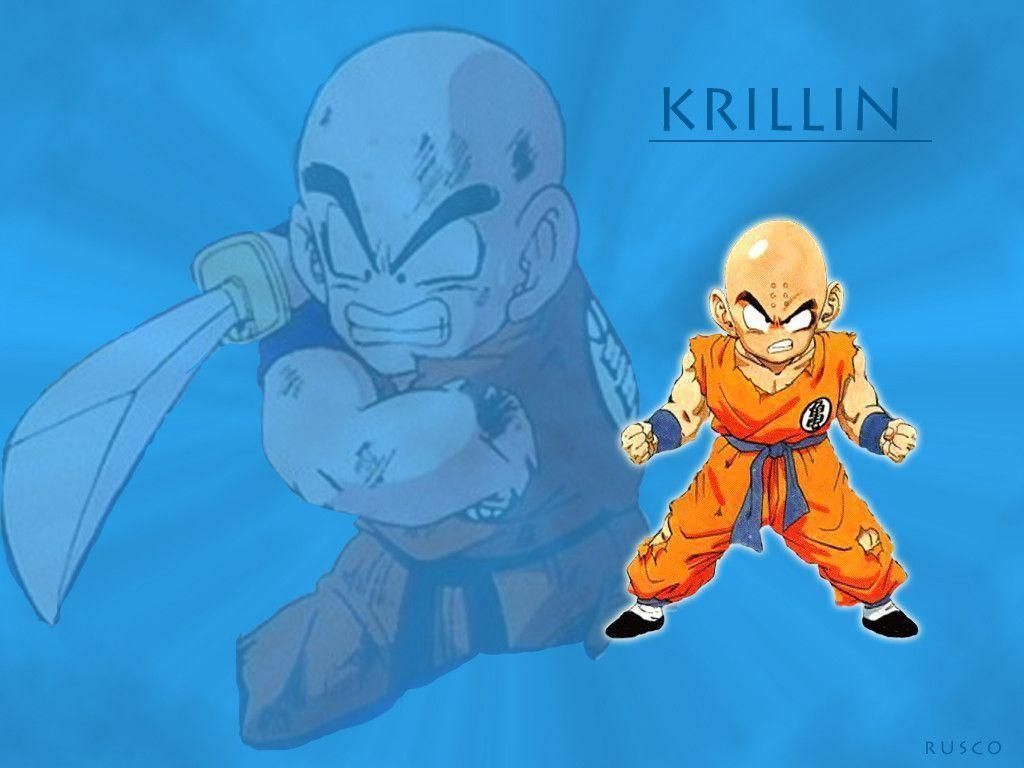 Krillin Wallpapers 1024x768