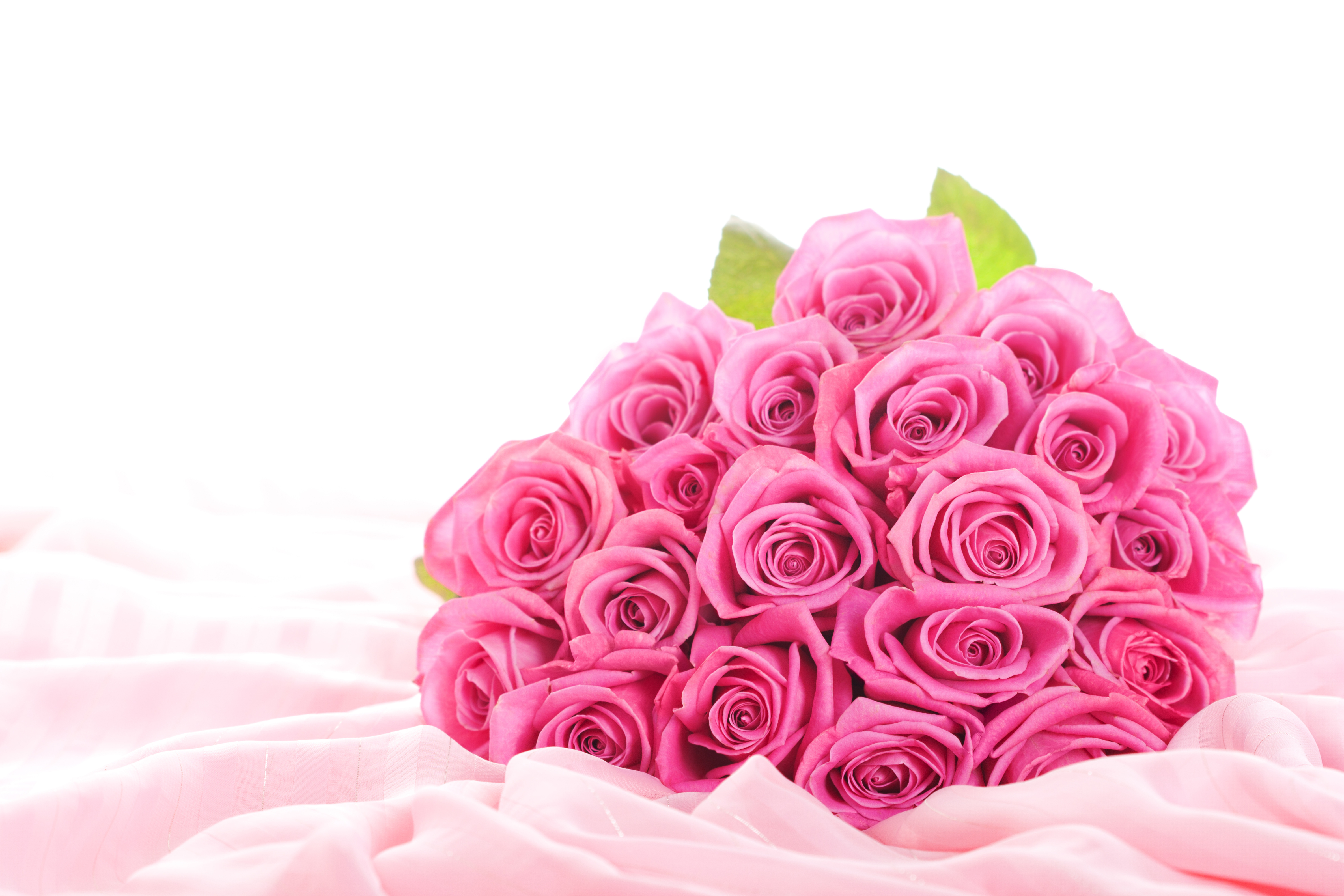 flowers roses pink flowers pink roses bouquet elegant flower buds 4752x3168