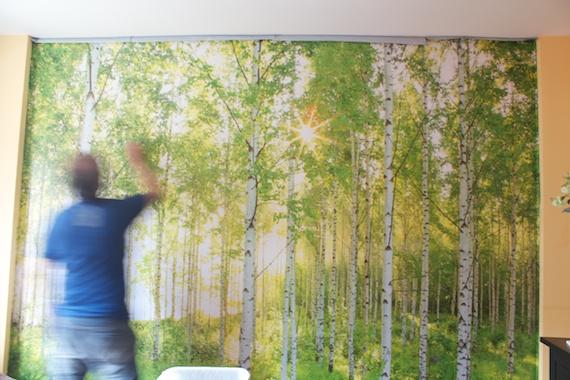 high definition wallpapercomphotodiscount wallpaper outlet31html 570x380