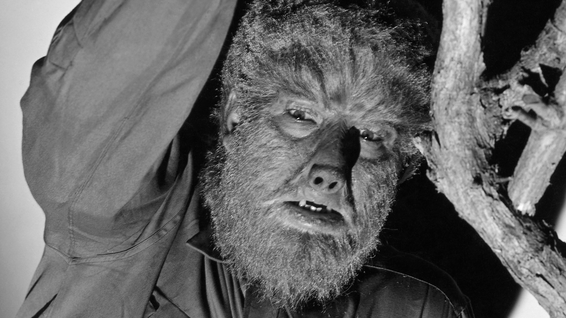 Universal Plans To Reboot The Wolf Man Again Fanboycom 1920x1080