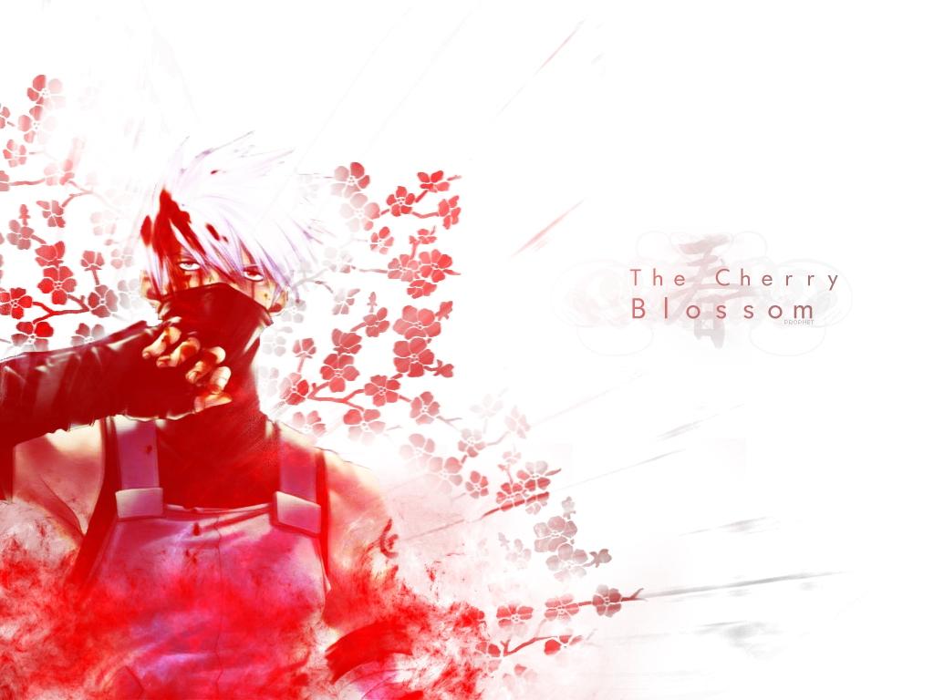 Cherry Blossom Wallpaper Backgrounds Cherryblossomwallpaperanime 1024x768