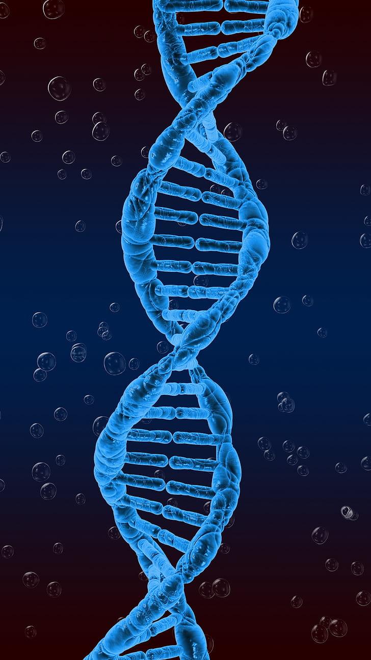 HD wallpaper dna spiral genetics twisted Wallpaper Flare 728x1294