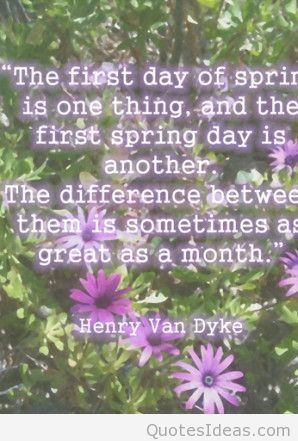 First day of spring quotes wallpapers and flowers photos 298x441
