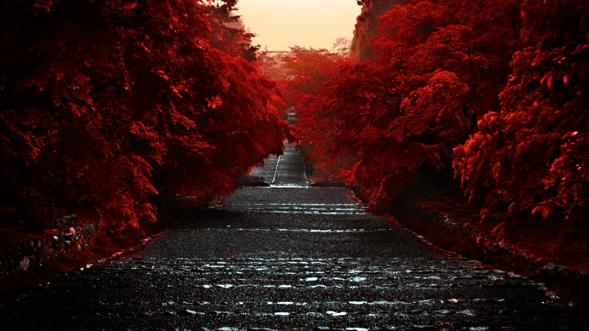 japanese writing wallpaper 29 japanese desktop wallpaper images in the best available resolution enjoy and share them with all your friends.