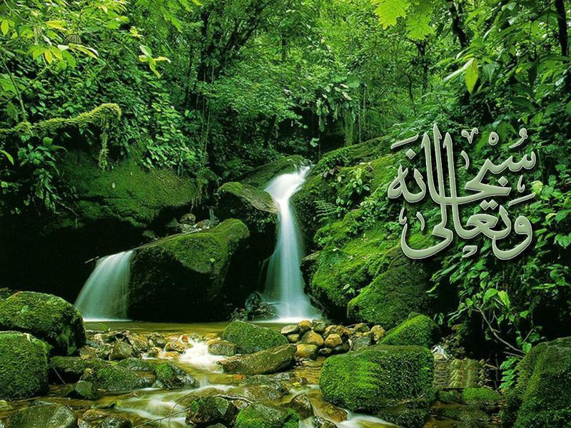 Islamic Wallpapers 800x600