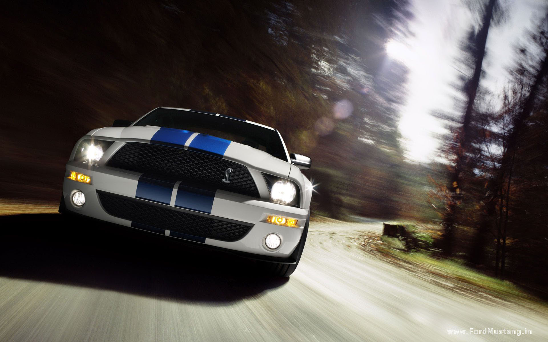 Hd wallpaper quality - Ford Mustang Wallpaper 3 Hq High Quality Ford Mustang Wallpaper