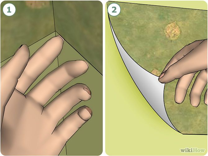 Ways to Remove a Wallpaper Border   wikiHow 670x503