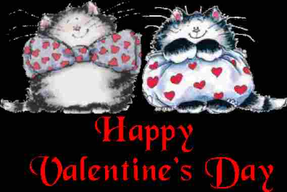 Valentines Wallpapers Valentine Cats Wallpapers Happy Valentines Day 568x380