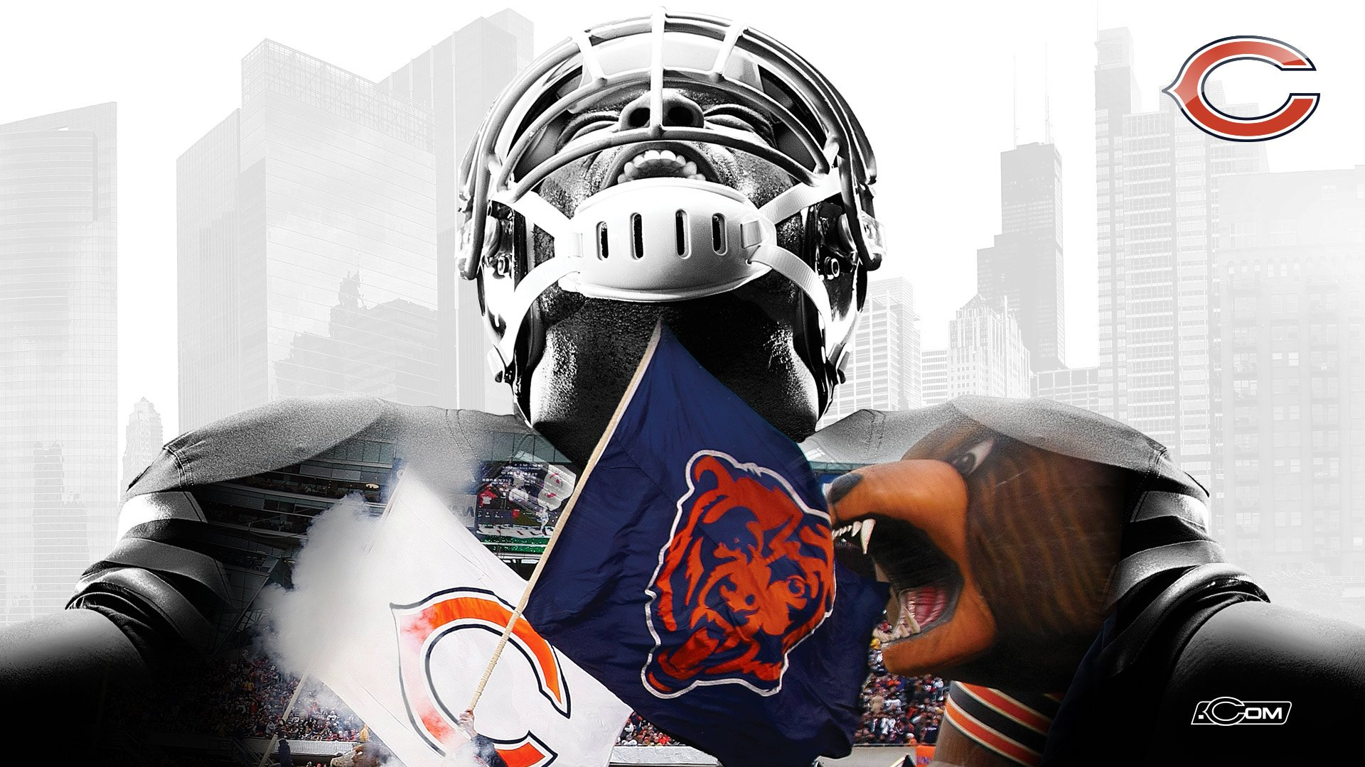Chicago Bears 2014 Wallpapers 1920x1080